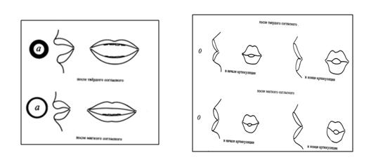 губы1 губы2